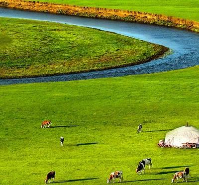呼伦贝尔草原游